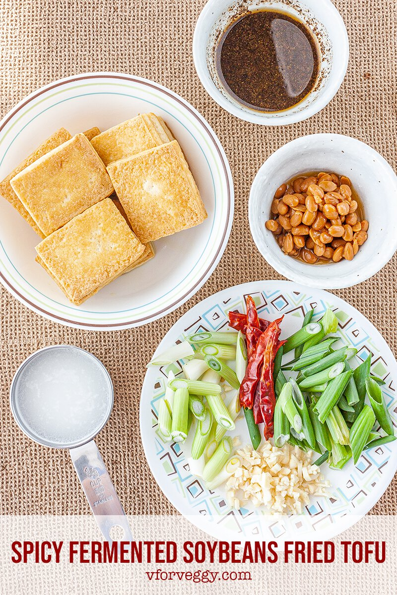 Spicy Fermented Soybeans Fried Tofu